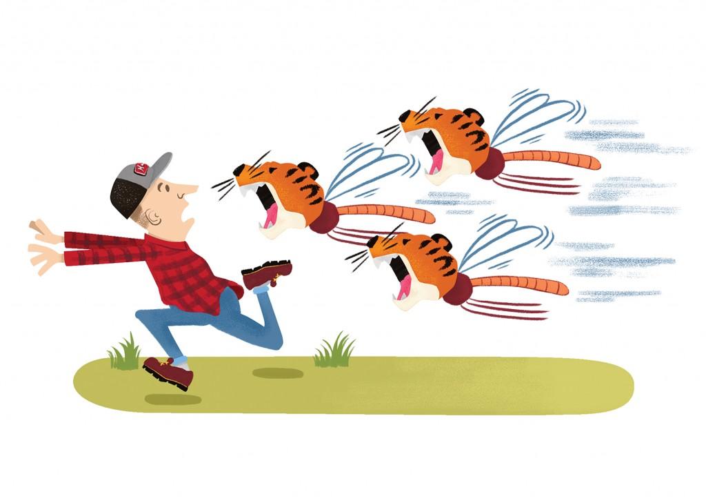 Red Awards Tiger Mosquitos Final