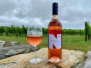 Newportvineyards Dryrose Vines